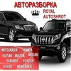 royal-autoshrot@ukr.net